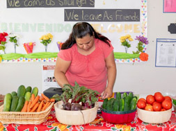 Woman cutting up vegetables to address food insecurity across the U.S.